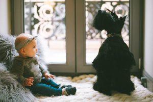 siedzące dziecko z psem
